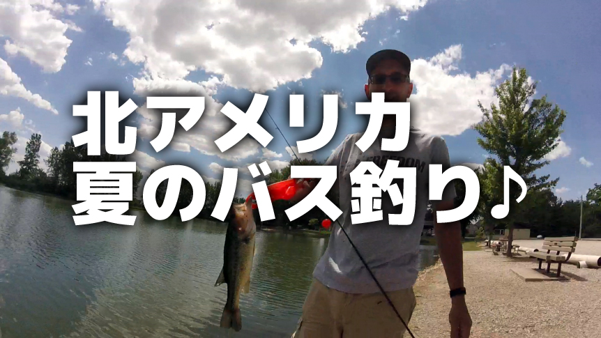 summertime-fishing-862x485