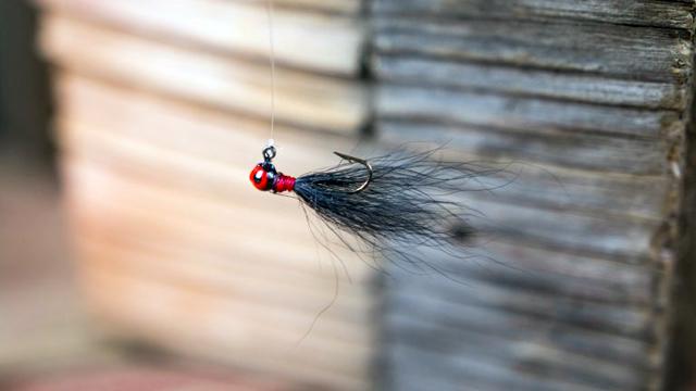 バックテールジグの釣り方4つのヒント♪