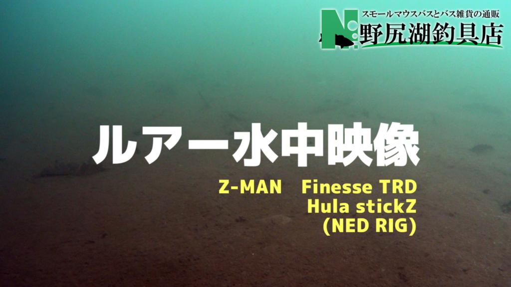 当店おすすめネッドリグ水中動画(NED RIG)