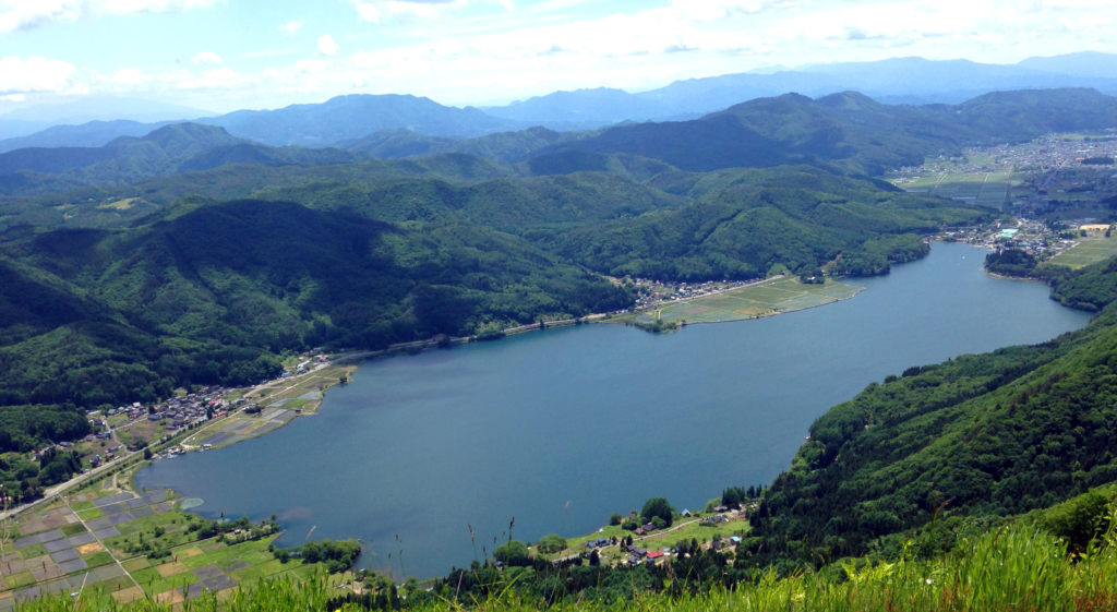 【小ネタ】木崎湖のエビVSバス