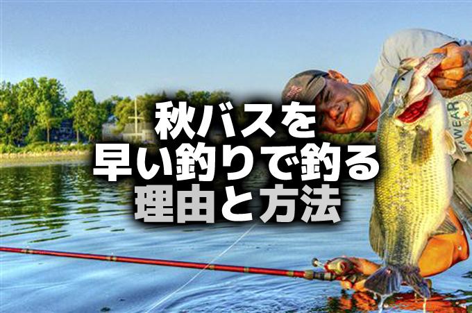 秋バスを巻きモノルアーで釣る理由と方法