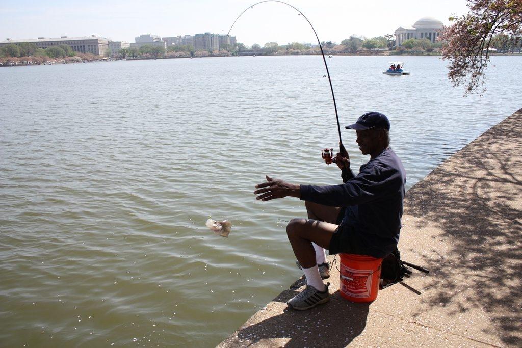 秋に釣りをするべき3つの理由