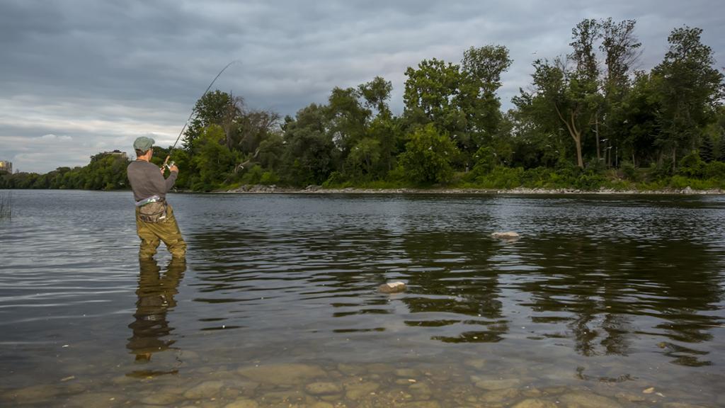 川のスモールマウスの居場所と釣り方