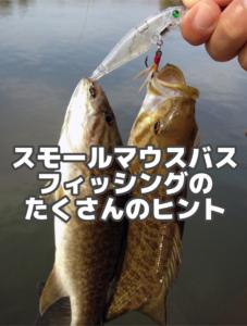 スモールマウスバスを釣るためのヒント集!
