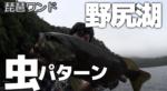 今日の野尻湖♪2016.07.14