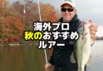 海外プロの秋のバス釣りおすすめルアー