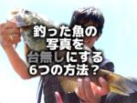 釣った魚の写真を台無しにする6つの方法?