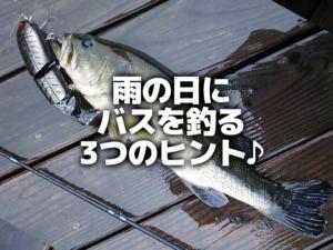 雨の日のバス釣りはこれで釣れる!釣れる釣り方やルアーを覚えよう