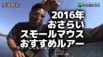 2016年おさらい♪スモールマウスバスおすすめルアー!