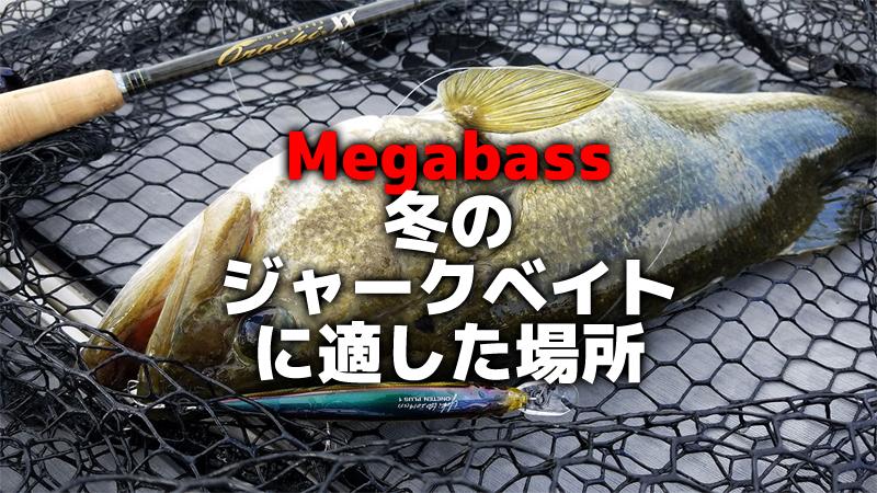 """""""Megabass""""冬のジャークベイトに適した場所"""