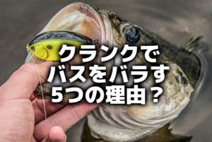 クランクで魚をバラす5つの理由?