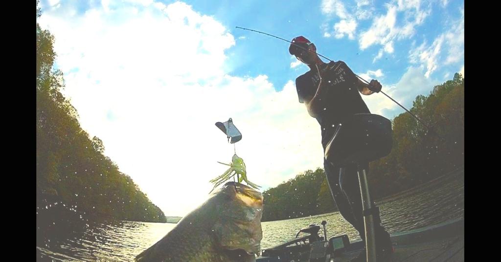 バズベイトの釣り