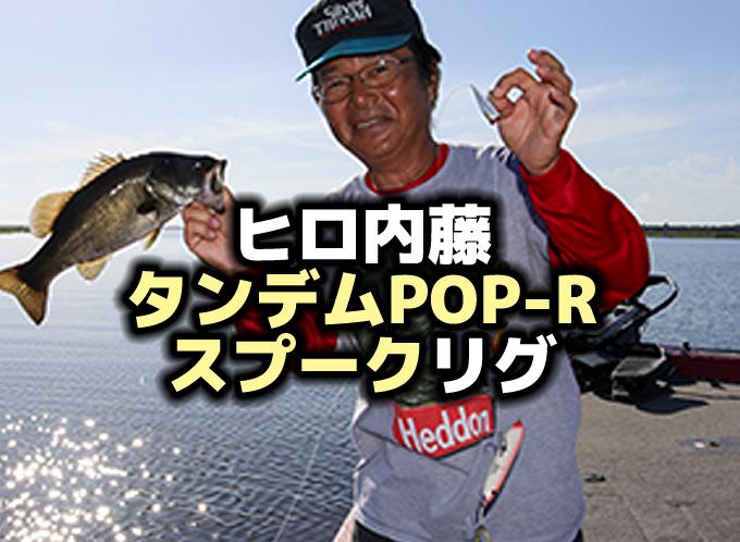 ヒロ内藤:タンデムPOP-Rスプークリグ