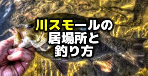 【日記】野尻湖釣具店とコミックマーケット