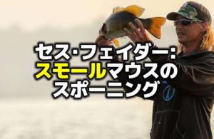 セス・フェイダー:スモールマウスバスのスポーニングと釣り