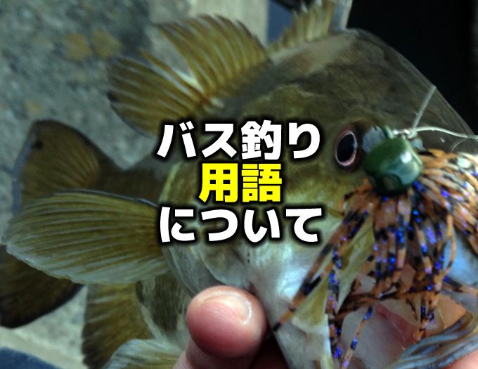 【小ネタ】バス釣り用語について