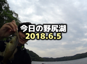 今日の野尻湖:6月のバス釣り