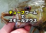 チューブワームでのスモールマウスバス釣り
