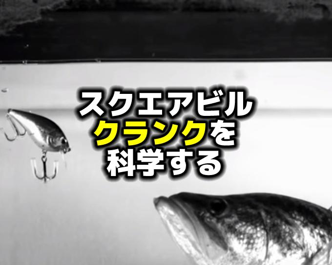 バス釣り:スクエアビルクランクを科学する