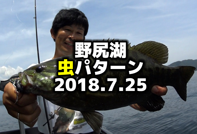 今日の野尻湖:(7月)夏の虫パターン