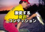 激変する夏のコンディション:タフった時のバス釣り