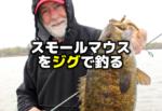 スモールマウスバスをジグで釣る