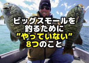2/27,28店休日のお知らせ