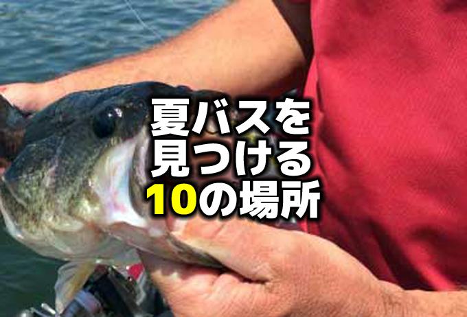 夏のバス釣り:夏バスを見つける10のポイント