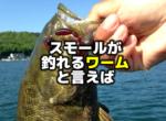 スモールマウスバスが釣れるワームと言えば【アメリカ版】