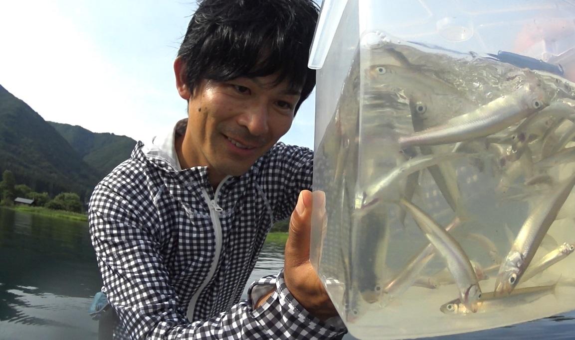 夏の木崎湖バス釣り:ワカサギパターン…?2018.8.19