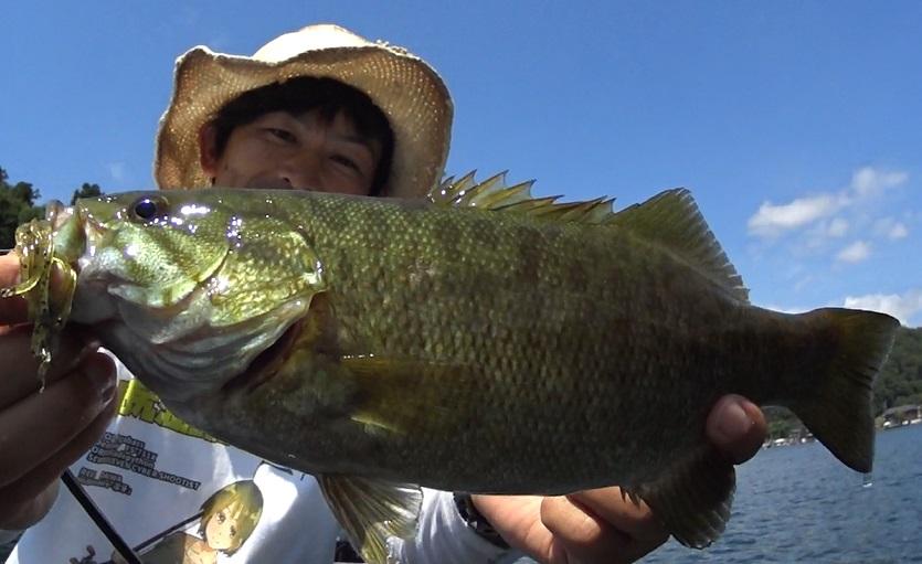 野尻湖8月:虫パターンのスモールマウスバス釣り