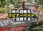 秋のバス釣りの恐怖はスピナーベイトで克服