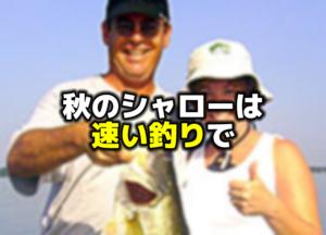 秋のバス釣りはシャローの速い釣りで