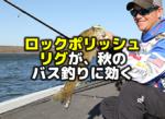 ロックポリッシュリグが秋のバス釣りに効く