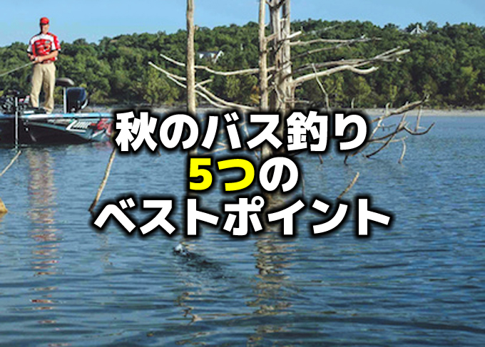 秋のバス釣り:5つのベストポイント