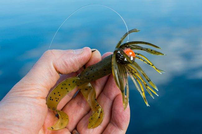 ドラッギングで釣る!秋のスモールマウスバス