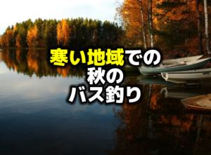 北国での秋のバス釣り