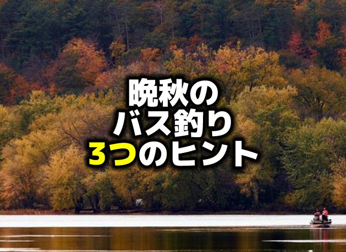 晩秋のバス釣り:3つのヒント