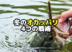 冬のオカッパリバス釣り:4つの戦術