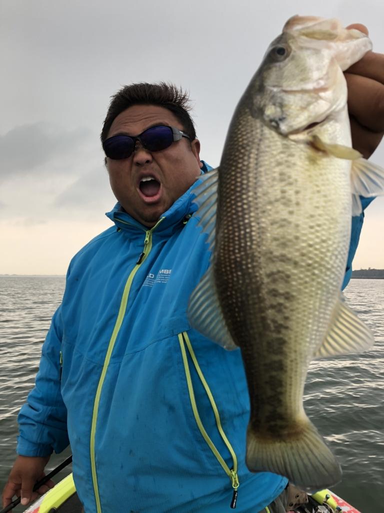 教えて!タクちゃん:冬の琵琶湖バス釣りとジグヘッドスイミング
