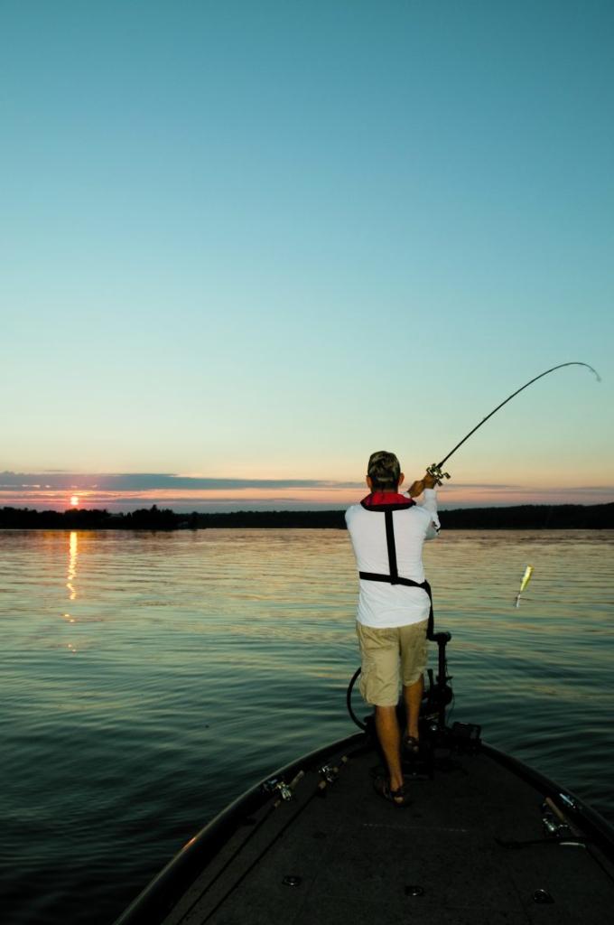 ローライトでのラージマウスバス釣り