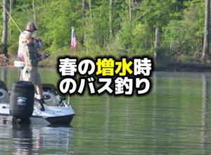 春の増水時のバス釣り