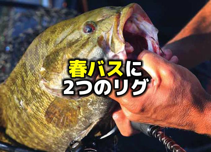 春のバス釣りに2つのリグ:ダウンショット&スプリットショット