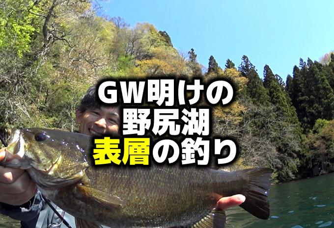 5月GW明けの野尻湖スモールマウス:フォロースティック表層I字系