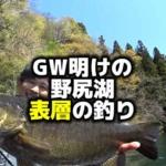 五十嵐誠 フォロー 野尻湖 5月