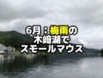 6月:梅雨の木崎湖でスモールマウスバス釣り