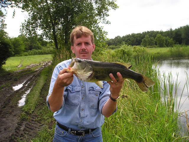 釣られていない池はチャンス