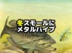 冬のスモールマウスバス釣りはメタルバイブ
