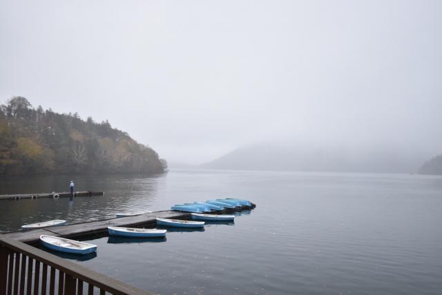 水温別:秋のバス釣り攻略法