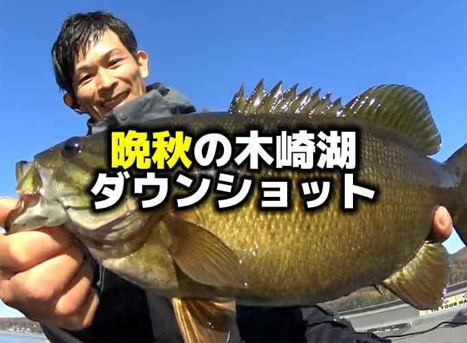 11月・晩秋の木崎湖バス釣り!ソアリンシャッドのダウンショット